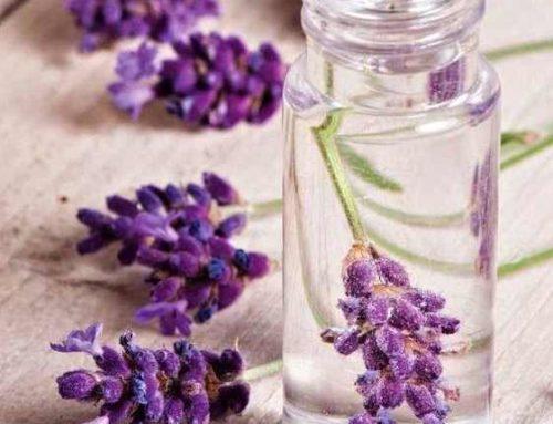 TOP 5 utilizări în casă a apei florale de lavandă
