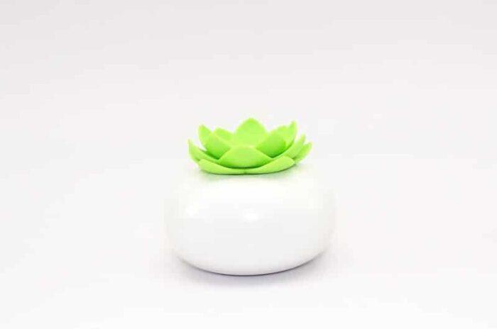 Difuzor de aromaterapie Lotul alb-verde